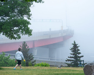 Foggy Summer Afternoon at Harbor View Park