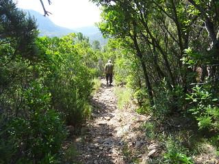 Travaux dans la montée Ranuchjaghja - col 400m sur le PR6