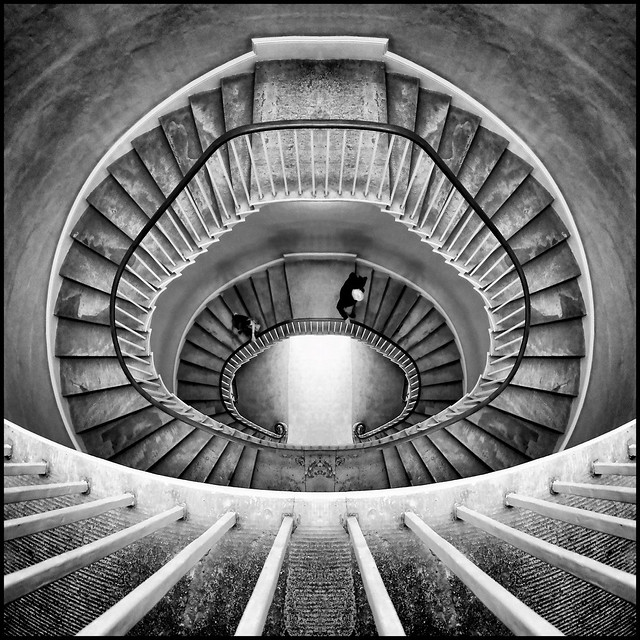 UK - Oxford - Tower of the Winds spiral stair 02_mono flipped sq_DSC0454