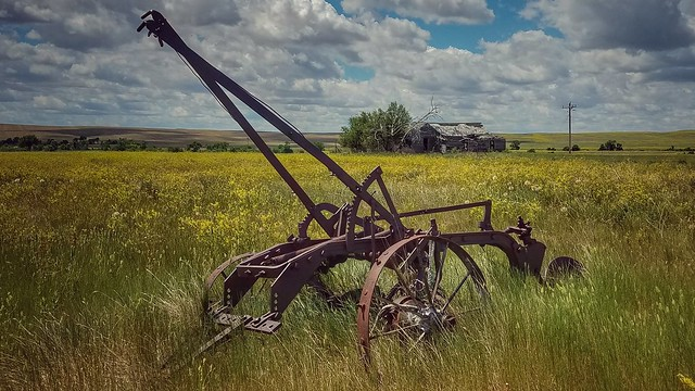 life on prairie...(HSS)