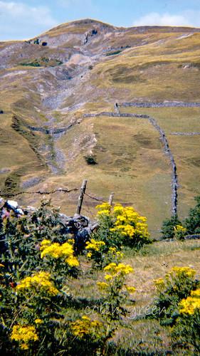 Hills above Langthwaite
