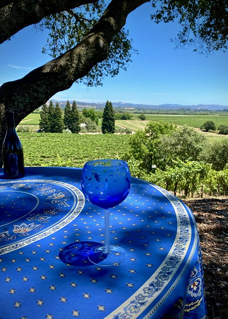 Blue by the vineyard