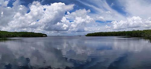 fisherbray usa unitedstates florida leecounty capecoral fourmilecove ecologicalpreserve hike hiking google pixel4 caloosahatcheeriver water wasser panorama sky