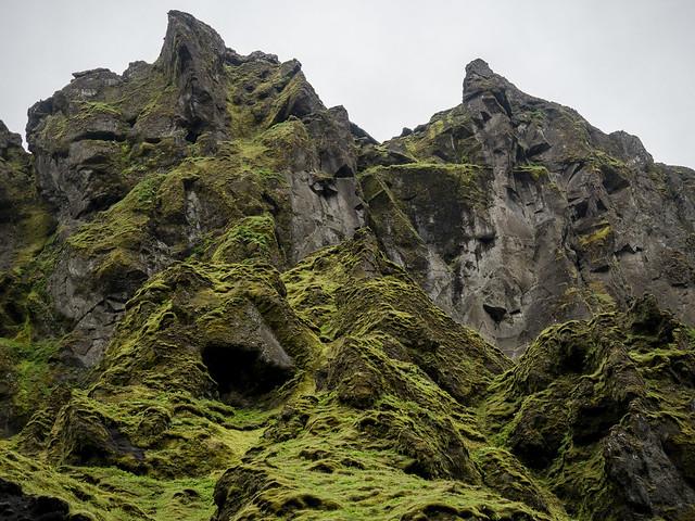 Moss vs stone