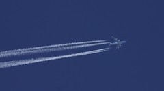 KLM Cargo (Operated by Martinair Holland) Boeing 747-406F(ER) PH-CKC MP7122 MPH7122 MIA-AMS FL370