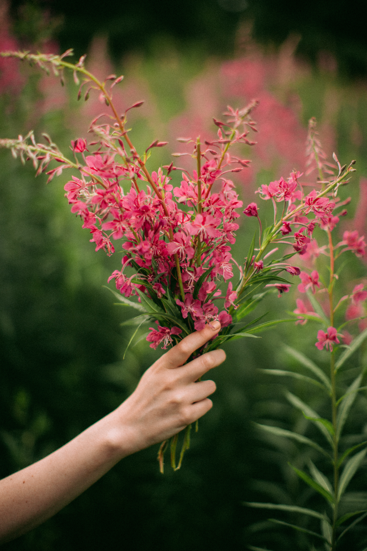 flowercrown-51