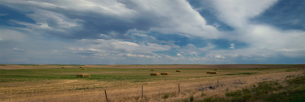 Weld County, CO