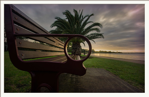 nedlands swanriver palmtree bench sunrise