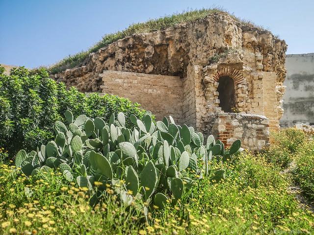 La fontaine des catacombes de Kom El Shuqafa à Alexandrie