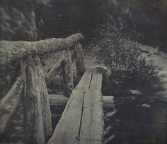 two log crossing