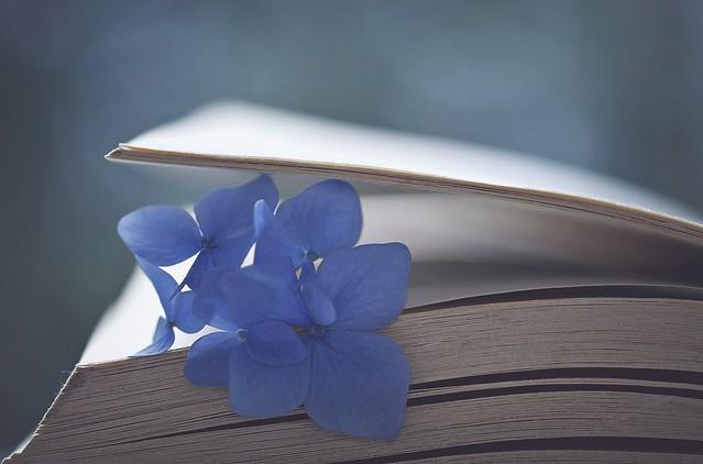 Natural bookmarks...