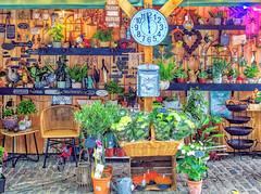 Florist - Guildford