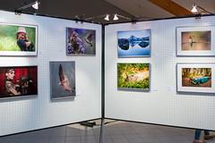 2019 Salon National