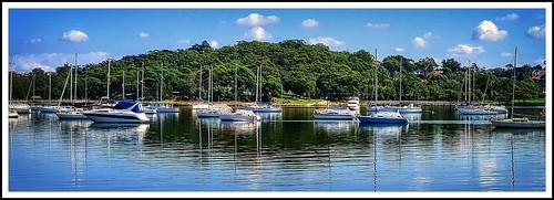 blue water boats bay bluewater yachts sanssouci parkland kogarah carsspark kogarahbay