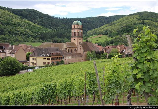 View from the Vineyards, Kaysersberg, France