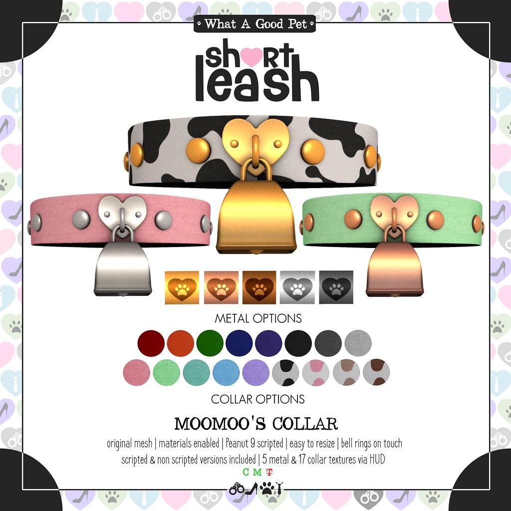 .:Short Leash:. MooMoo's Collar