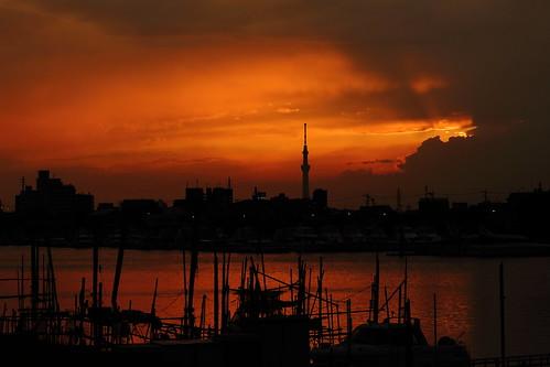 ichikawa chiba japan sunset cloud clouds cloudy sky water river kyuedoriver sun fishingboat boat skytree tower tokyo tokyoskytree weather