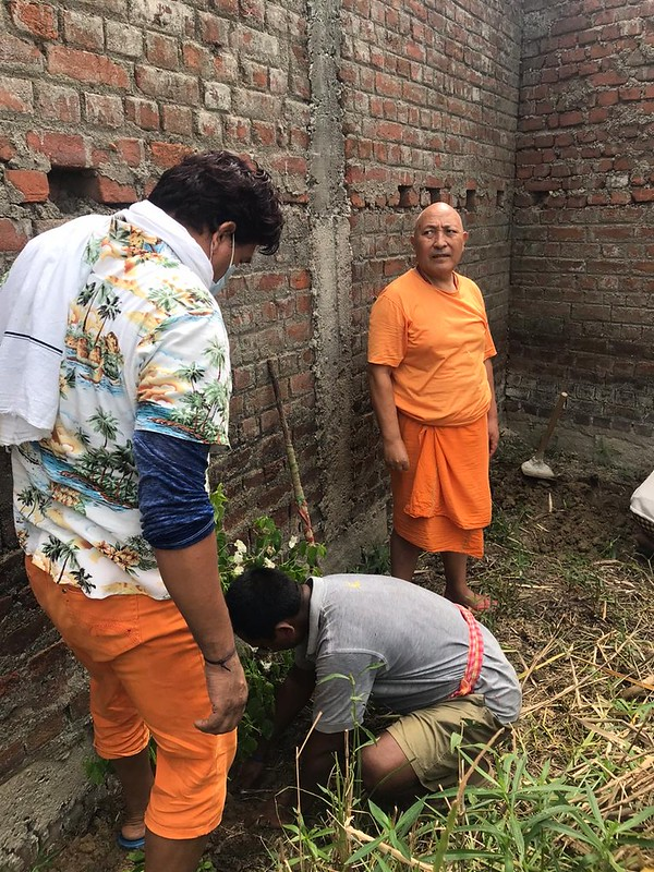 20200626 Tree planting programme