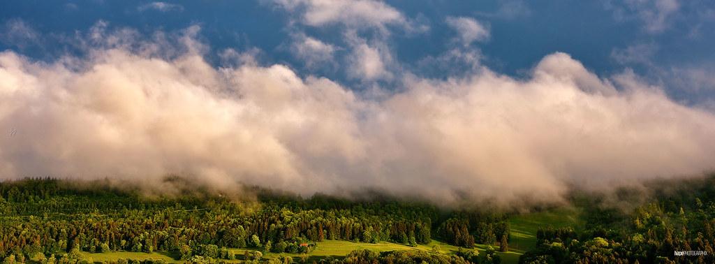 Holzhalde in Wolken