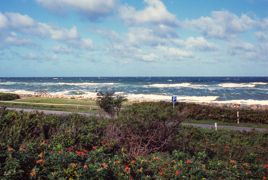 The coast at Raageleje, Denmark