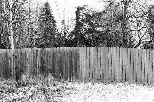 Two Tone Fences