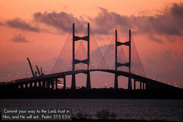 Dames Point Bridge ☀️ Jacksonville, FL