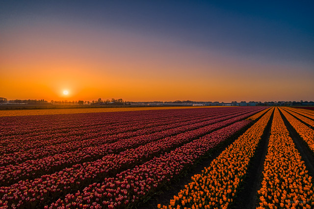 Sunset in Holland.