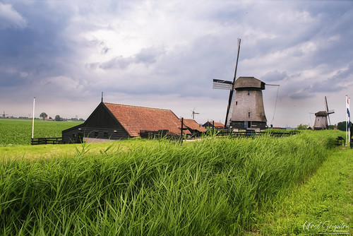 Windmills And Sheds