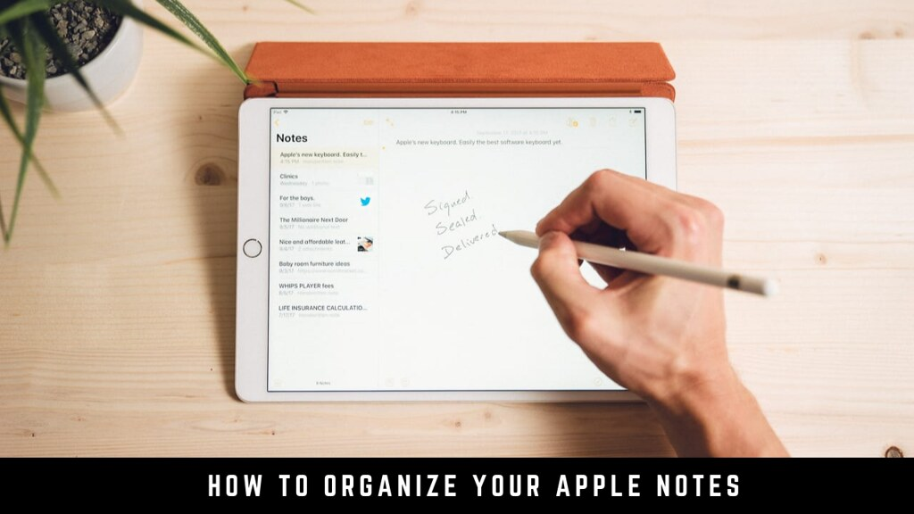 How to Organize Your Apple Notes