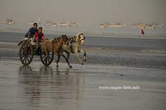 Gorai Beach, horse chariot