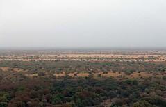 Zakouma National Park from the air, Chad