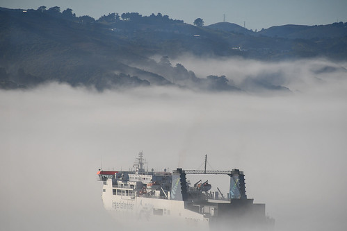 <p>The inter-island ferry Kaiarahi leaving Wellington in the fog.</p>