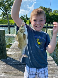 Photo of boy holding a white perch