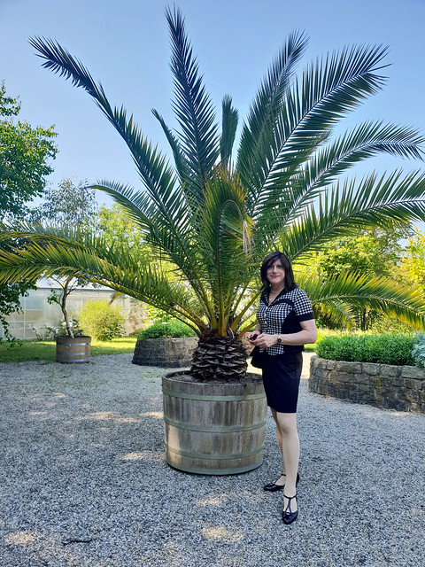 Botanical Garden 10