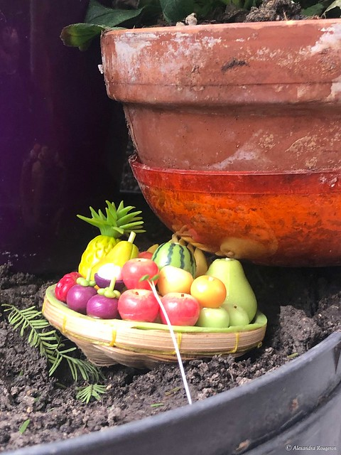 salade-de-fruits©