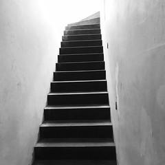 12_Escada_fotoFernandaChemale