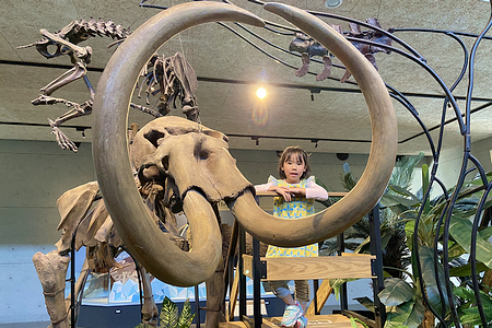 台版侏羅紀公園 左鎮化石園區