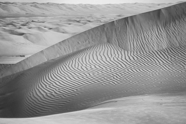 Waves of Sand - mono - Oman 100 - Explore # 8