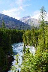 Glacier National Park - McDonald Falls