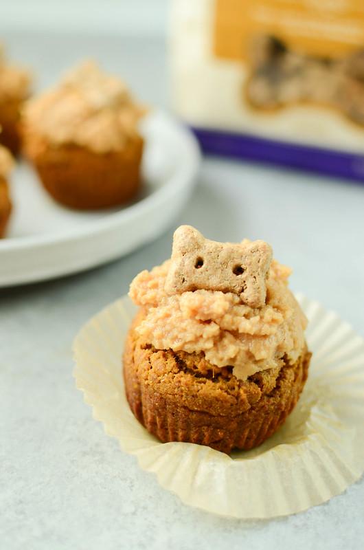 Peanut Butter Pumpkin Pupcakes - homemade dog cupcakes made with peanut butter and pumpkin. How cute are these for a dog birthday party?!