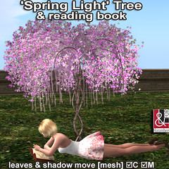 16 'Spring Light' Tree & reading book (leaves & shadow move) PIC