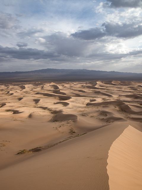 Dunes of Khongoryn Els