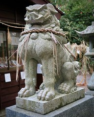 Buff komainu at Tsukiyomi 1