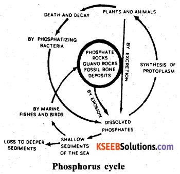 2nd PUC Biology Previous Year Question Paper March 2020 Q23