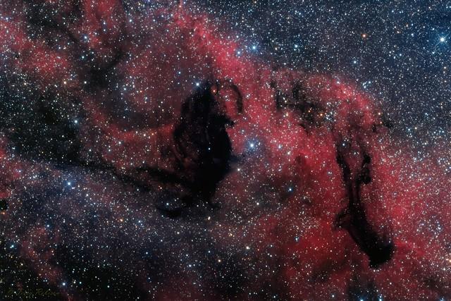 Dark Nebula in the Sagittarius Star Cloud