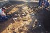 Exhumación en Piedrafita de Babia (León)