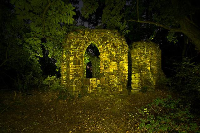 Die Ruine im Wald