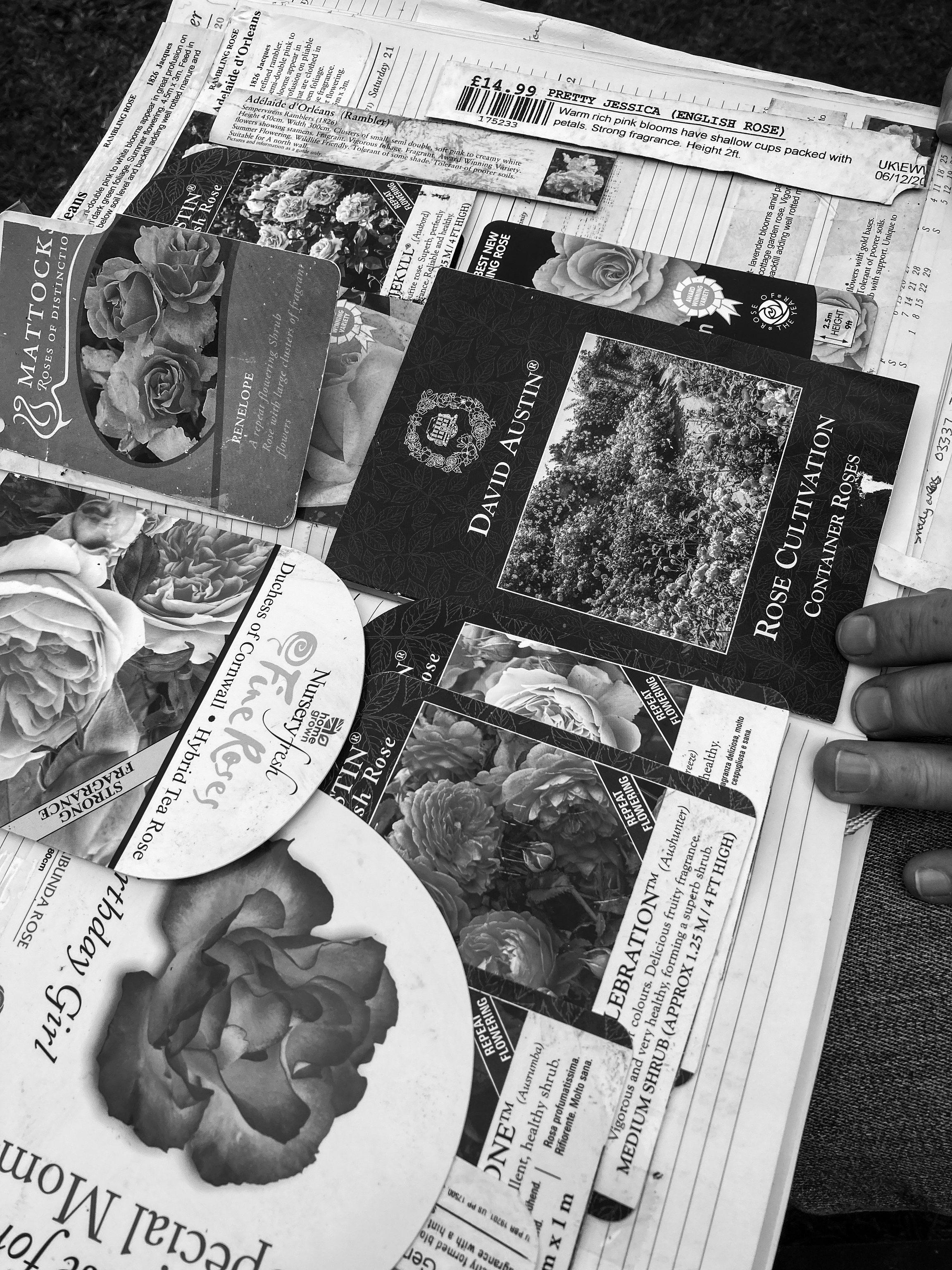 Nana's garden record book