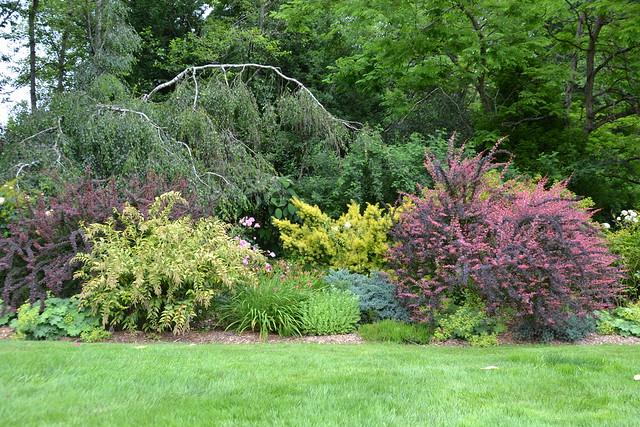 Soos Creek Botanical Garden and Heritage Center 1