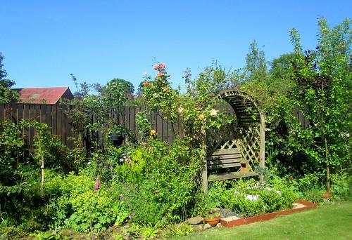 my garden, Fife